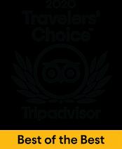 TripAdvisors Travelers